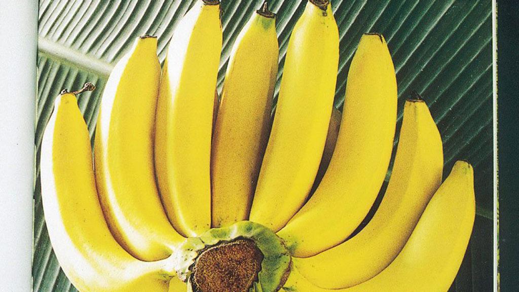 ประโยชน์ของกล้วยหอม