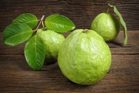ฝรั่ง ผักผลไม้ที่มีคอลลาเจนสูง